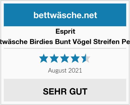 Esprit Bettwäsche Birdies Bunt Vögel Streifen Perkal Test