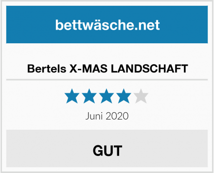 No Name Bertels X-MAS LANDSCHAFT Test