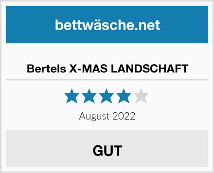 Bertels X-MAS LANDSCHAFT Test